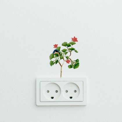 Little Joys Easy Wall Decals