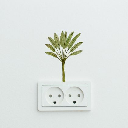 Easy Breeze Palms Easy Wall Decals